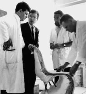 Verner Panton, nr. 2 fra højre, og medarbejdere fra udviklingsafdelingen hos Herman Miller-Vitra i 1966